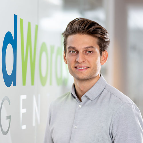 AdWords Agentur Wien | Vladimir Vukojevic